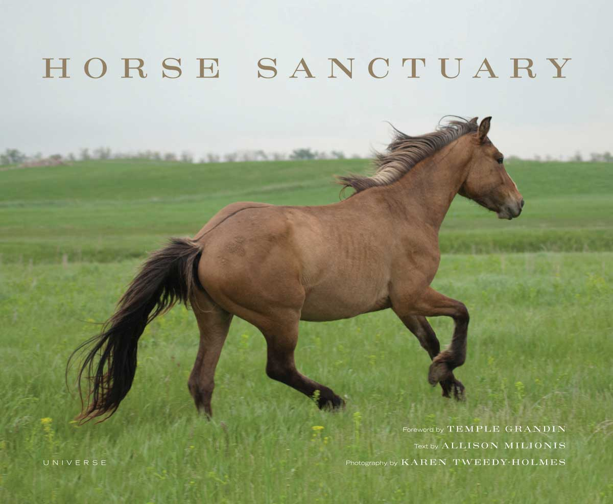 Horse Sanctuary by photographer Karen Tweedy-Holmes and author Allison ...: www.rogowaygalleries.com/announcing-a-very-special-book-signing-and...
