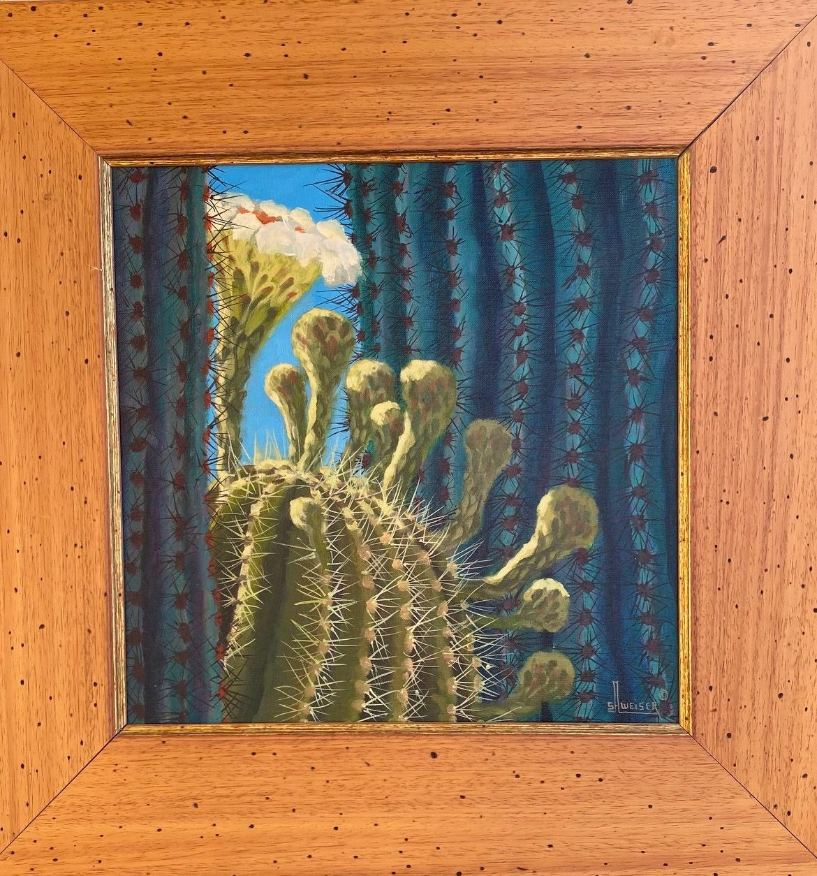 Cactus Blossoms, Sharon Weiser, Rogoway Gallery