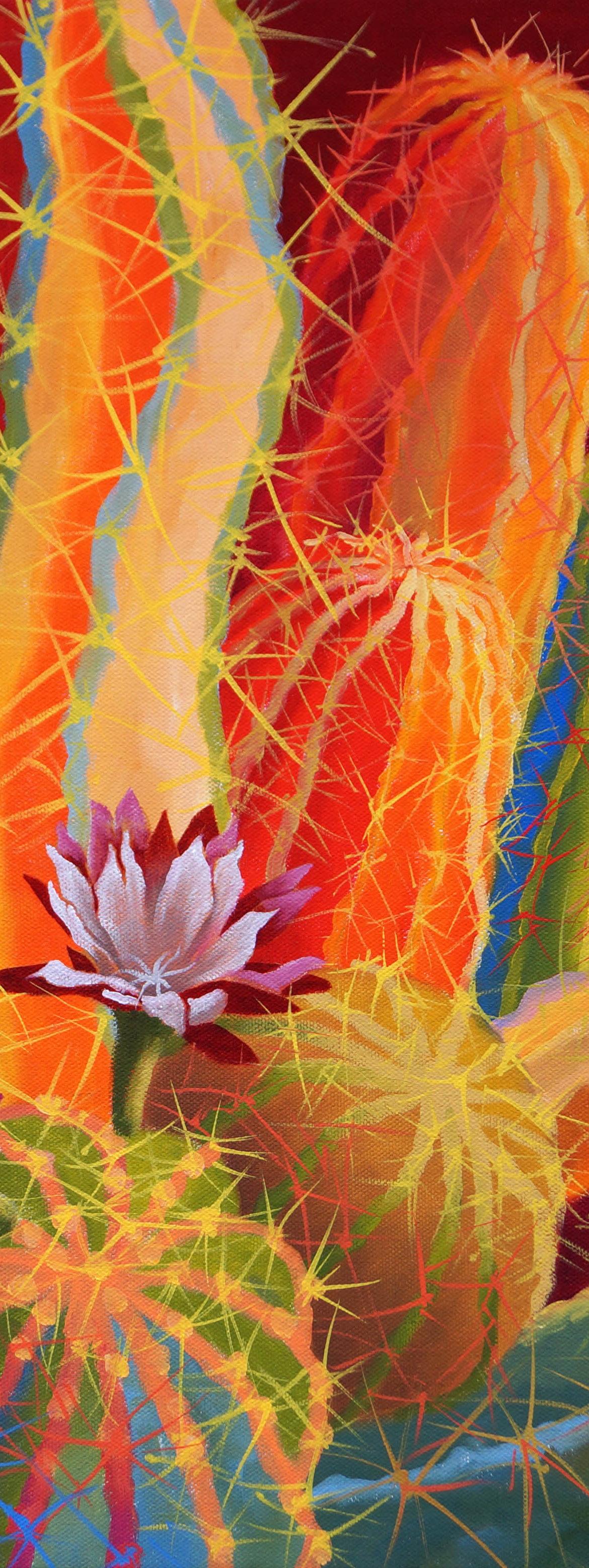 Desert Garden #26, Sharon Weiser, Rogoway Gallery