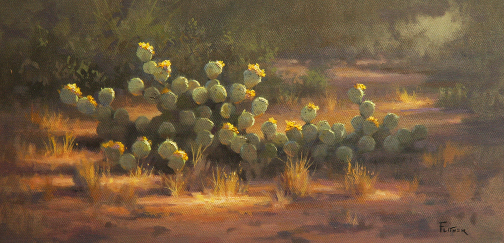Cactus Blossoms, David Flitner