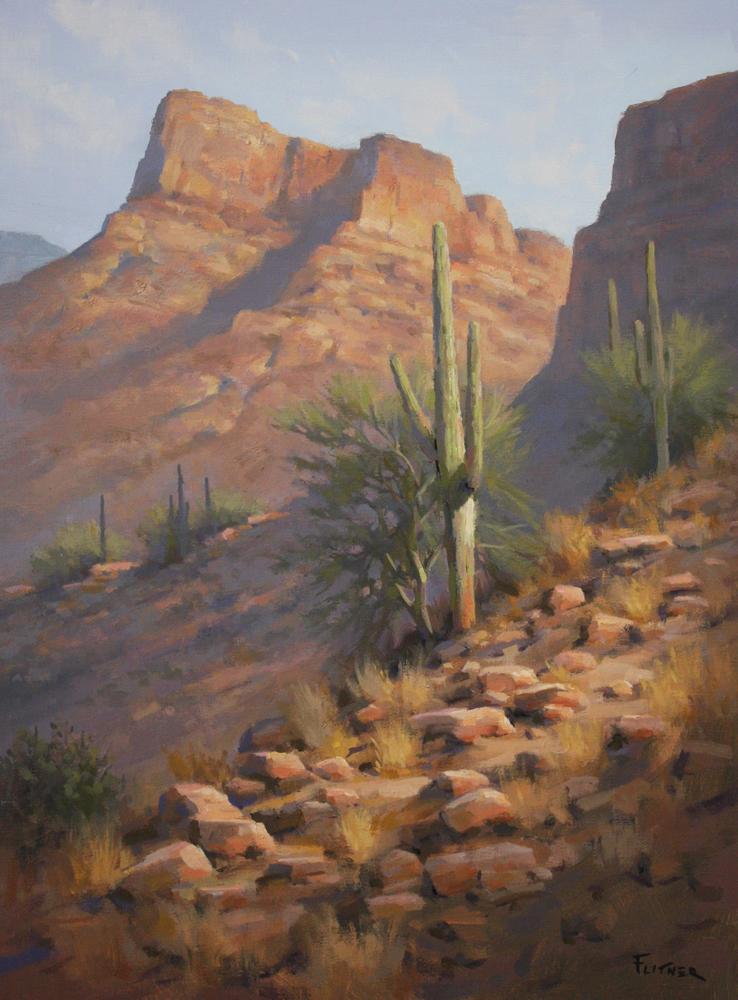 Desert Reflection, David Flitner