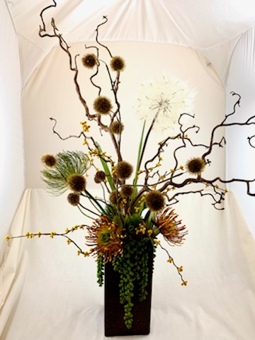 Anza Haze, Ana Thompson Botanical Art, Rogoway Gallery