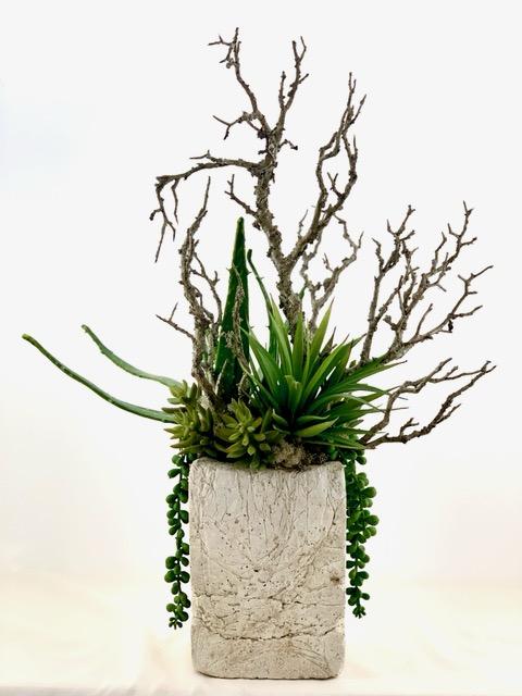 Fresh Start, Ana Thompson Botanical Art, Rogoway Gallery