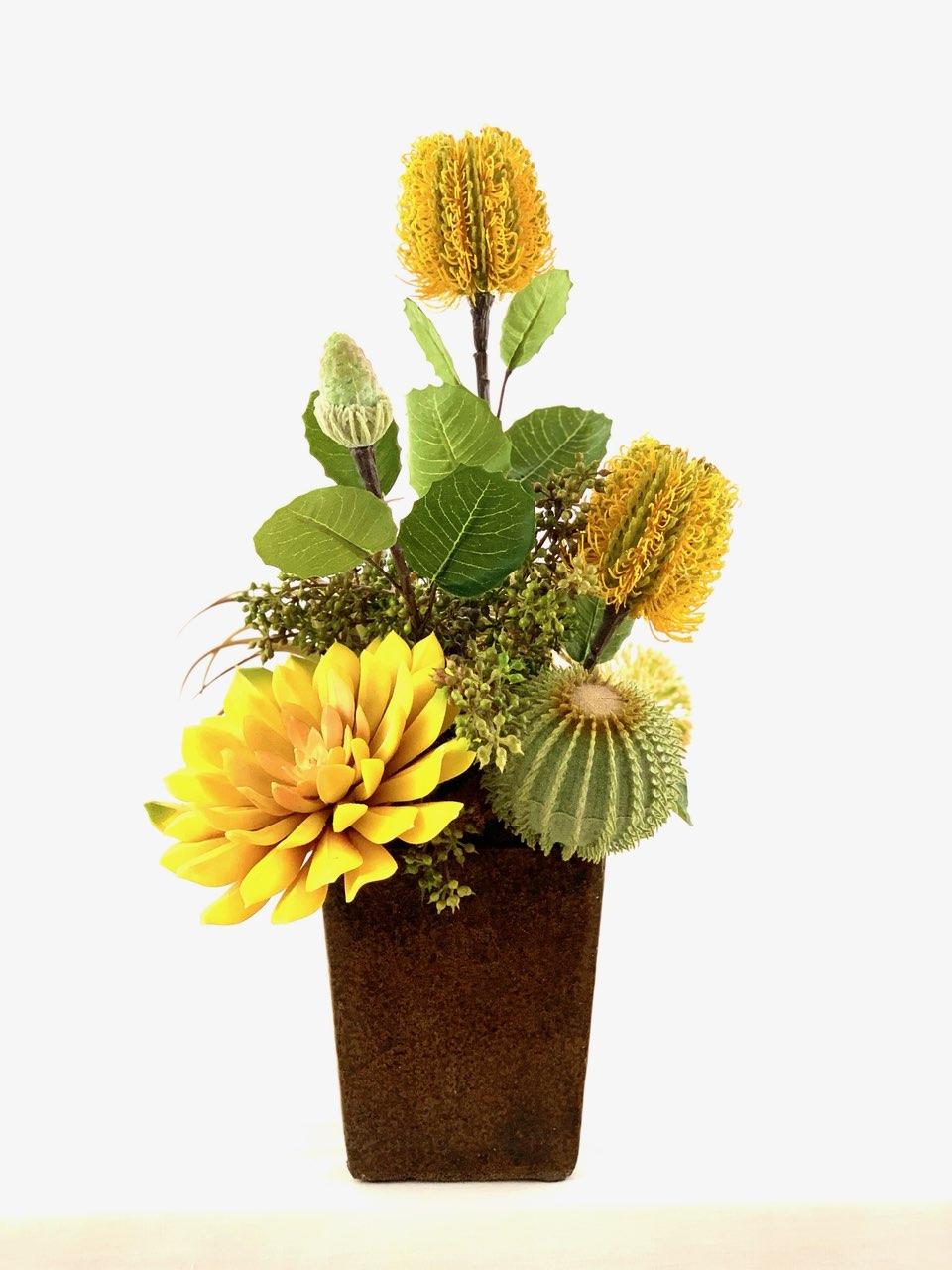 Box of Shine, Ana Thompson Botanical Art, Rogoway Gallery