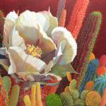 Desert Garden #28, Sharon Weiser, Rogoway Gallery