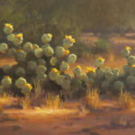 Cactus Blossoms, David Flitner
