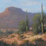 Saguaro Vista 10x20