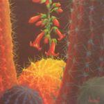 Desert Blooms 52, Sharon Weiser, Rogoway