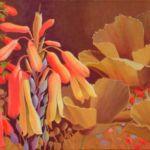 Desert Garden #8, Sharon Weiser, Rogoway