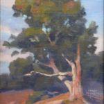 Canyon Tree Study, Walter Porter